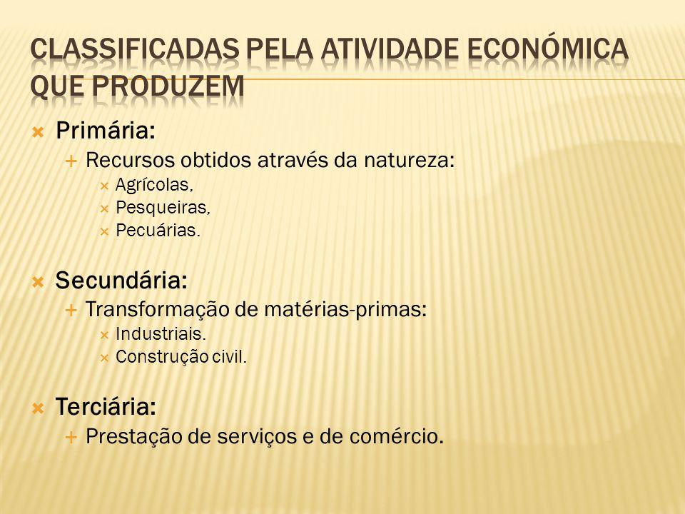 Classificadas pela atividade económica que produzem