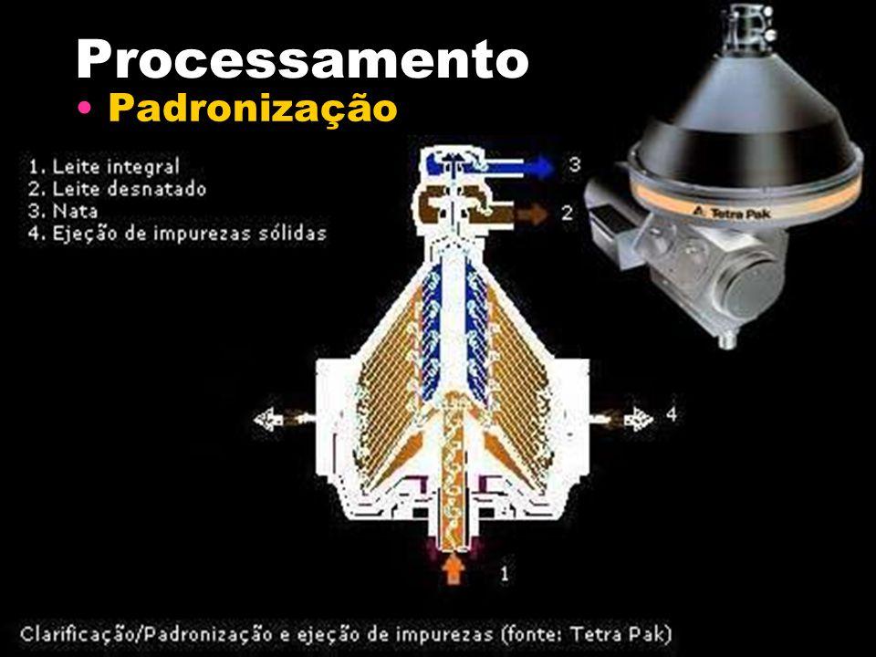 Processamento Padronização
