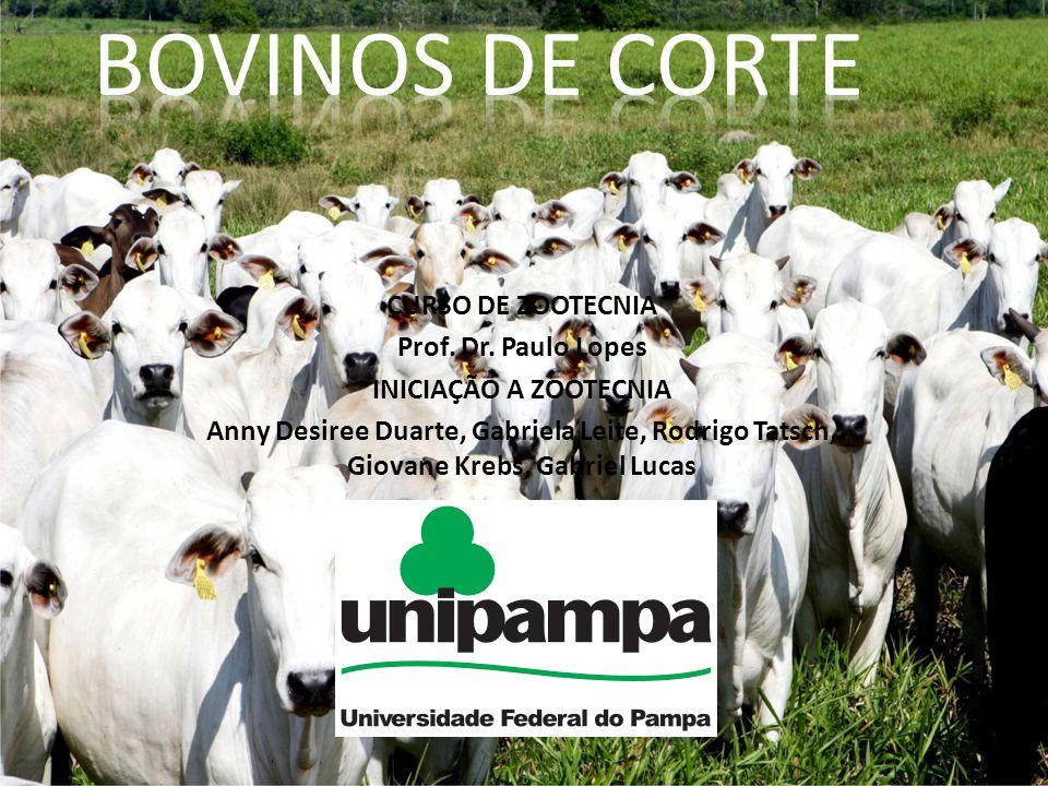 BOVINOS DE CORTE CURSO DE ZOOTECNIA Prof. Dr. Paulo Lopes