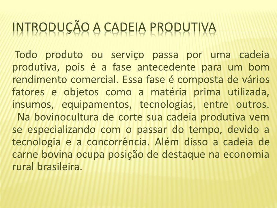 Introdução a cadeia produtiva