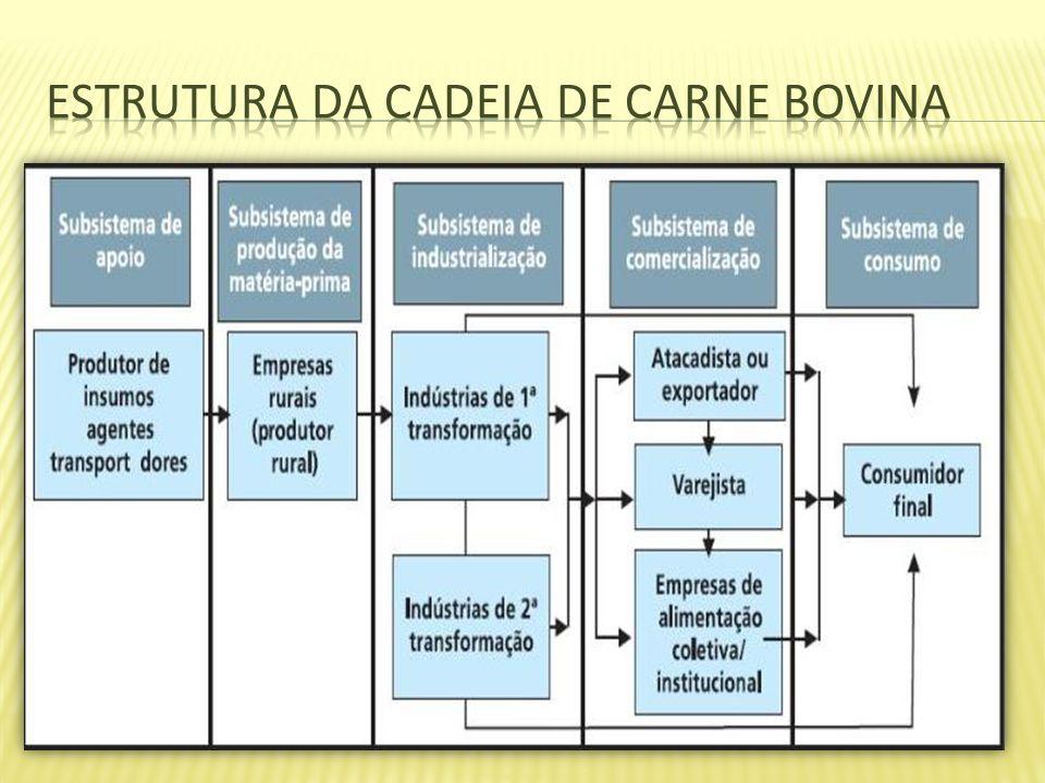 Estrutura da cadeia de carne bovina