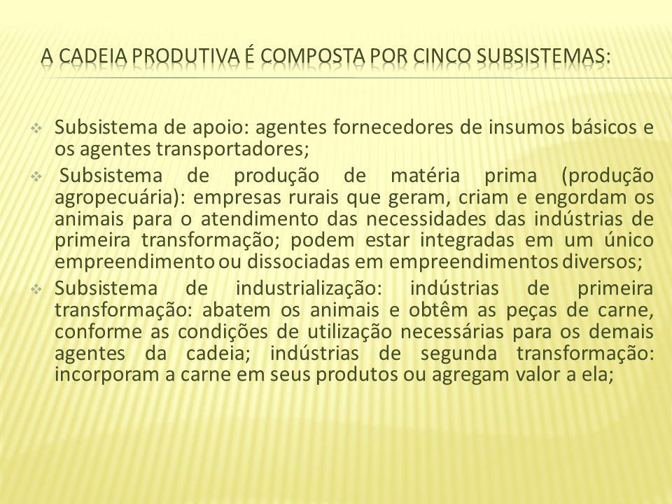 a cadeia produtiva é composta por cinco subsistemas: