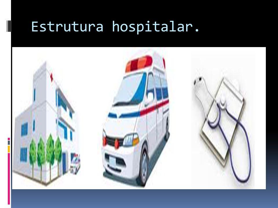 Estrutura hospitalar.