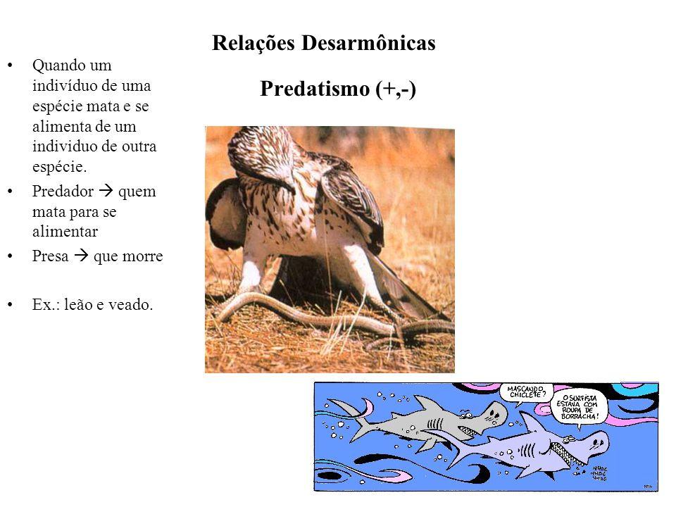 Relações Desarmônicas Predatismo (+,-)