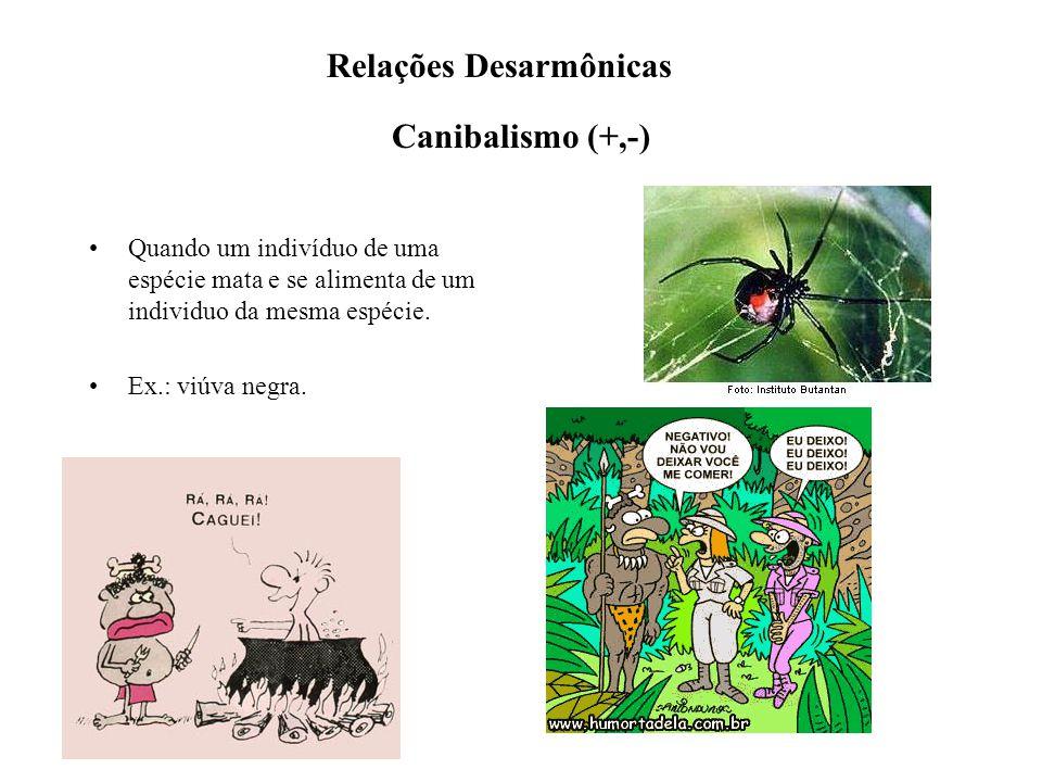 Relações Desarmônicas Canibalismo (+,-)