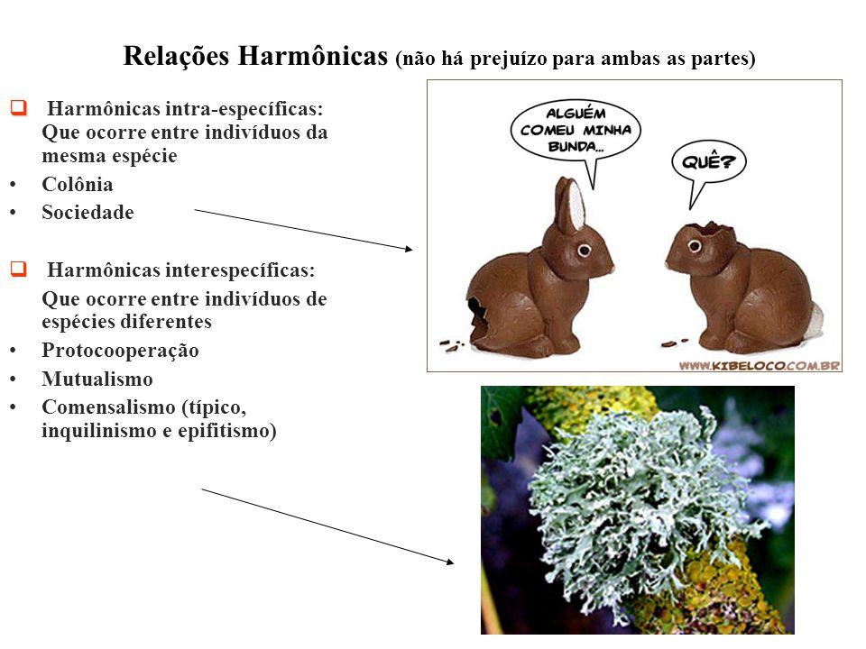 Relações Harmônicas (não há prejuízo para ambas as partes)