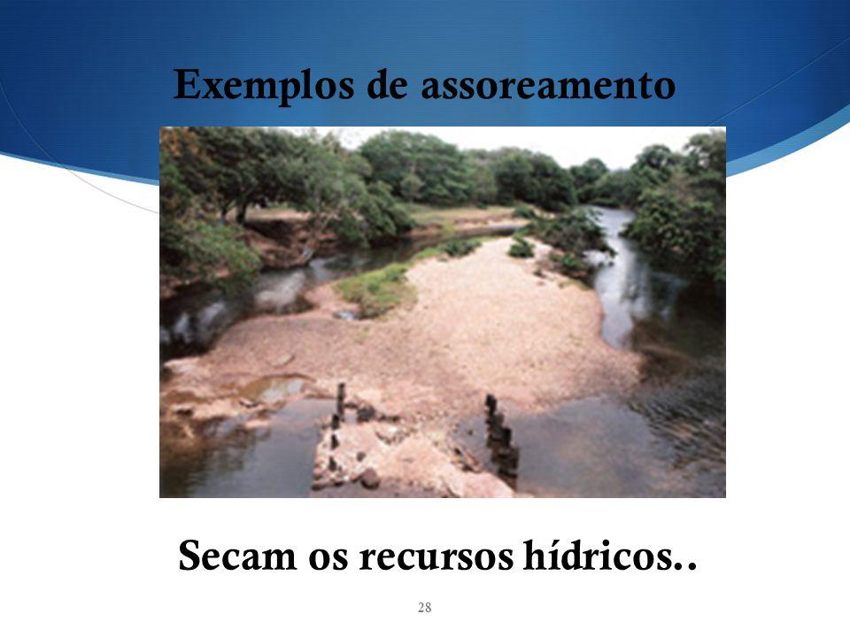 Exemplos de assoreamento Secam os recursos hídricos..