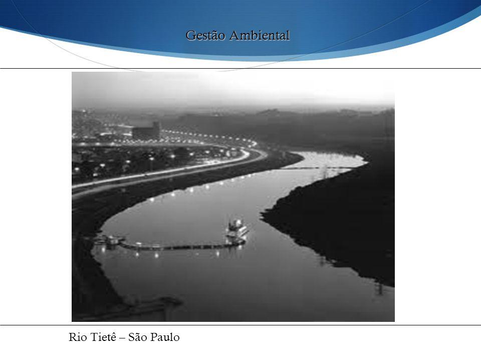 Gestão Ambiental Rio Tietê – São Paulo 32