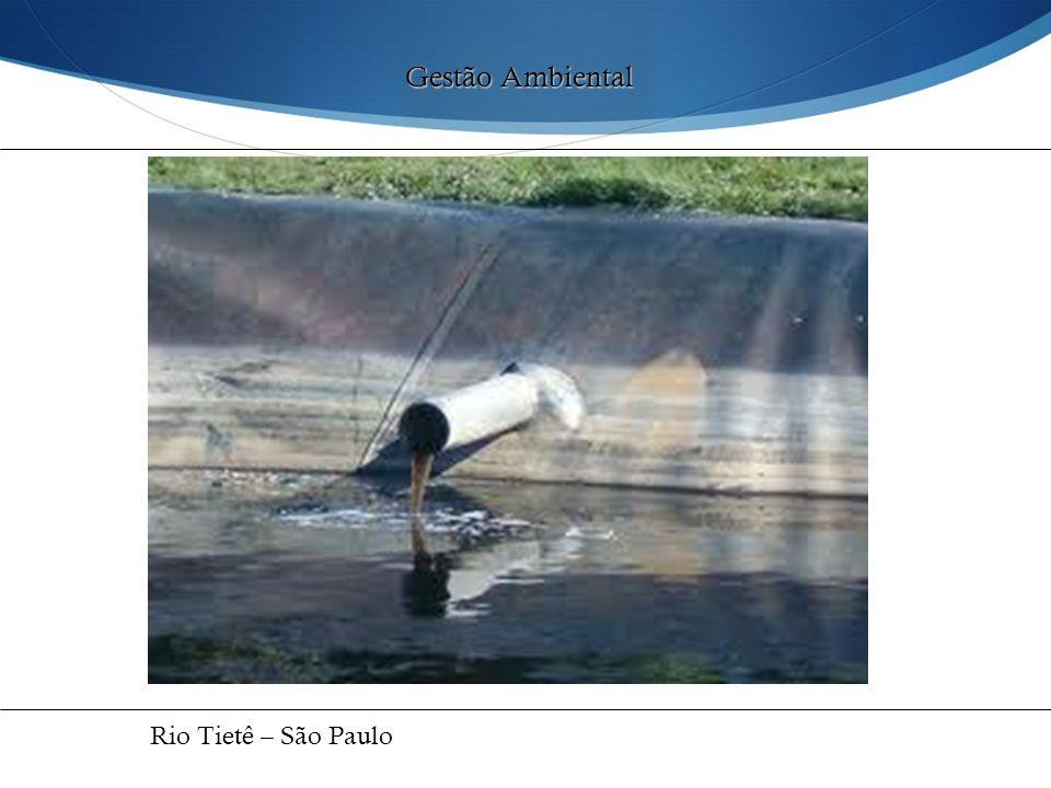 Gestão Ambiental Rio Tietê – São Paulo 34
