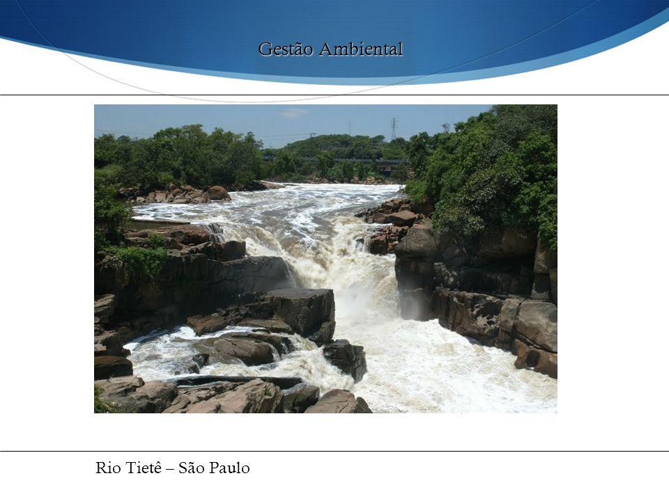 Gestão Ambiental Rio Tietê – São Paulo 38