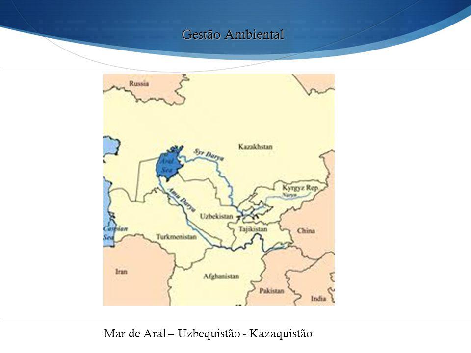 Gestão Ambiental Mar de Aral – Uzbequistão - Kazaquistão 41