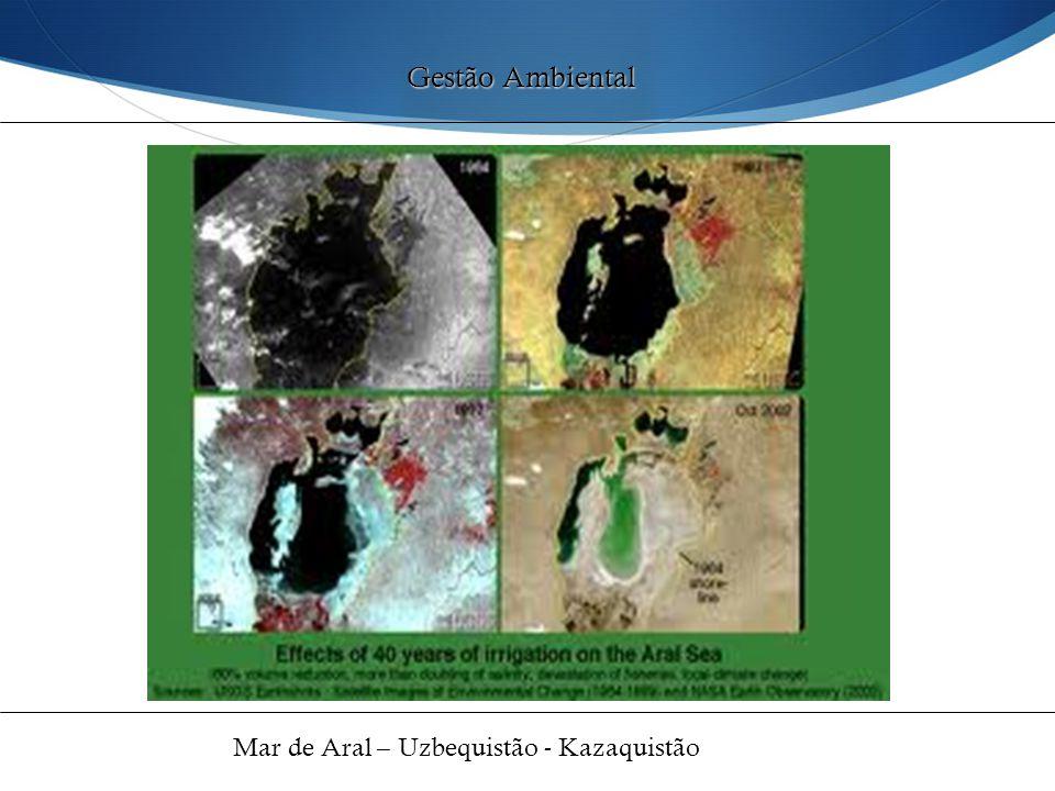Gestão Ambiental Mar de Aral – Uzbequistão - Kazaquistão 44