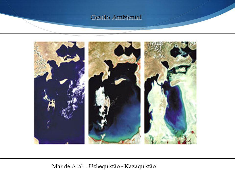 Gestão Ambiental Mar de Aral – Uzbequistão - Kazaquistão 45