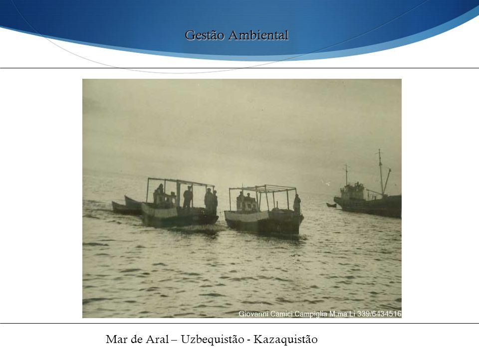 Gestão Ambiental Mar de Aral – Uzbequistão - Kazaquistão 46