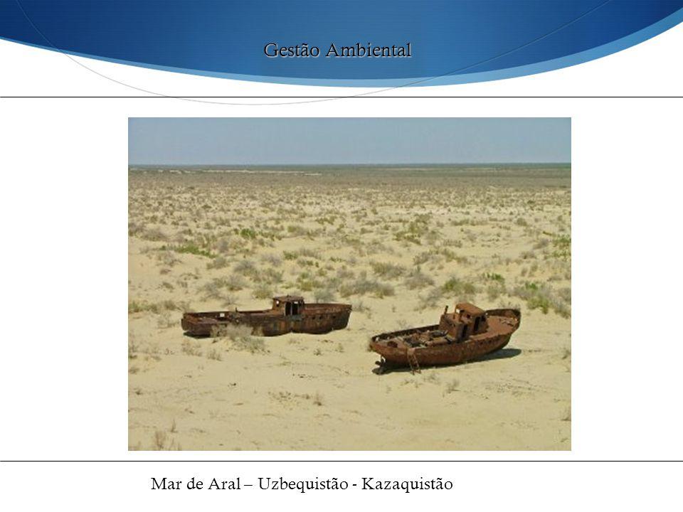 Gestão Ambiental Mar de Aral – Uzbequistão - Kazaquistão 48