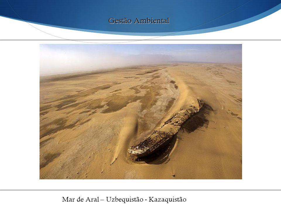 Gestão Ambiental Mar de Aral – Uzbequistão - Kazaquistão 49