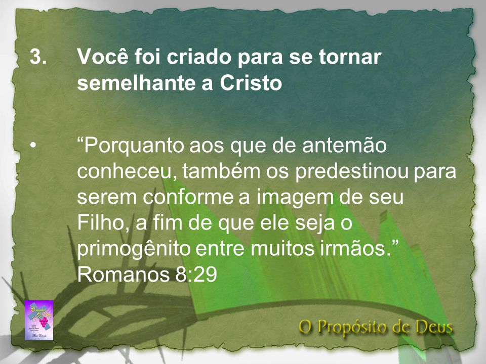 Você foi criado para se tornar semelhante a Cristo