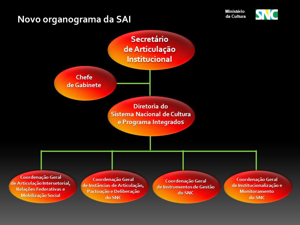 Novo organograma da SAI