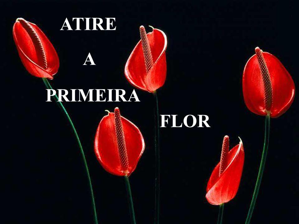 ATIRE A PRIMEIRA FLOR