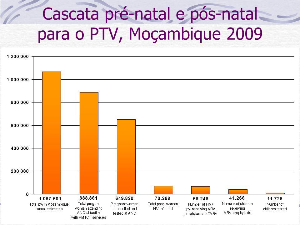 Cascata pré-natal e pós-natal para o PTV, Moçambique 2009