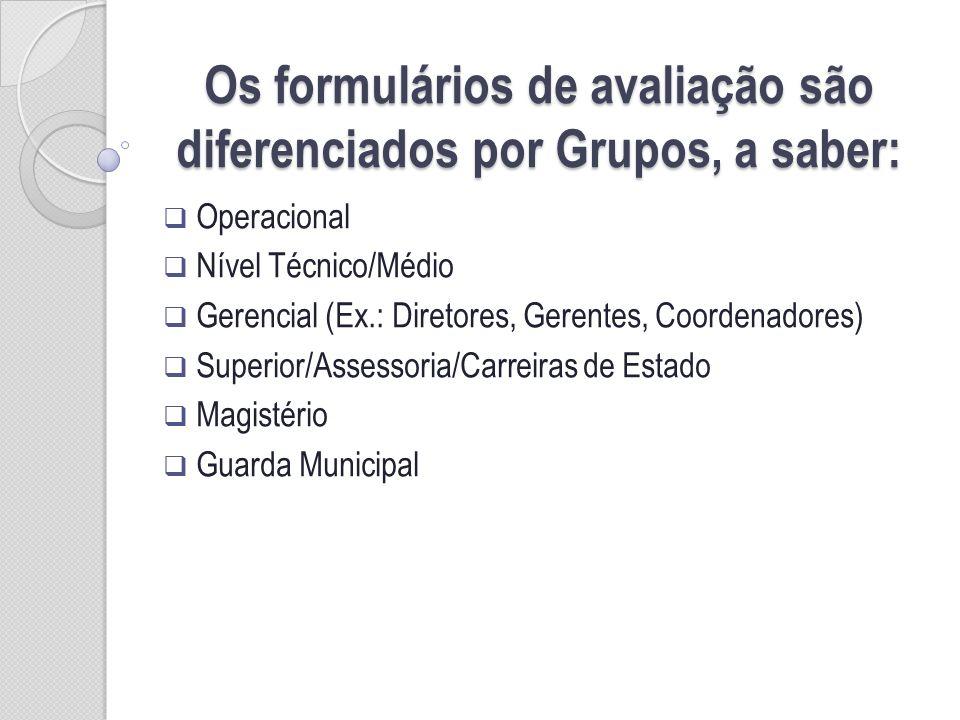 Os formulários de avaliação são diferenciados por Grupos, a saber: