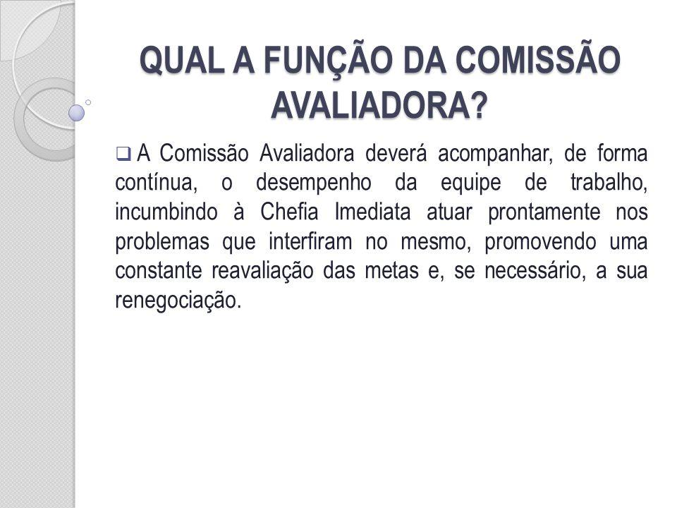 QUAL A FUNÇÃO DA COMISSÃO AVALIADORA
