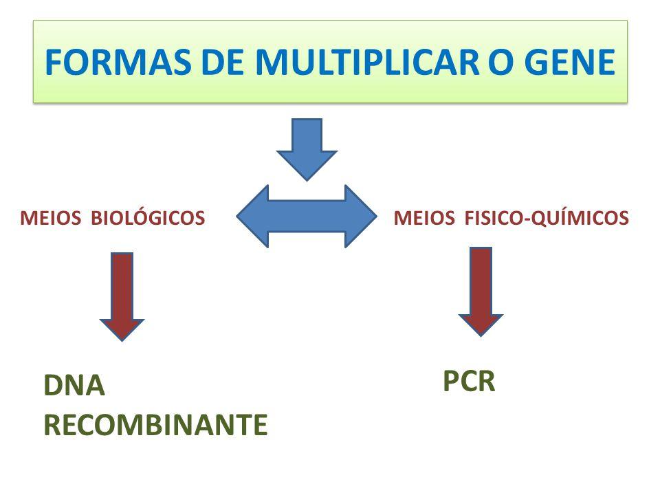 FORMAS DE MULTIPLICAR O GENE