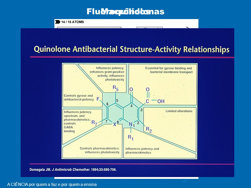 Macrólidos Fluoroquinolonas