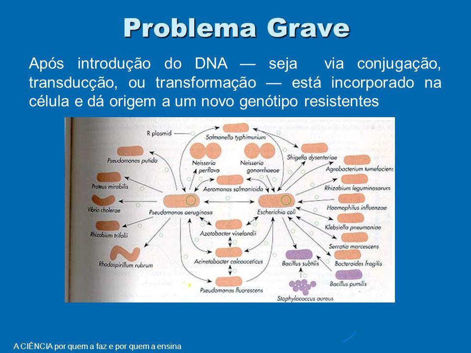 Problema Grave