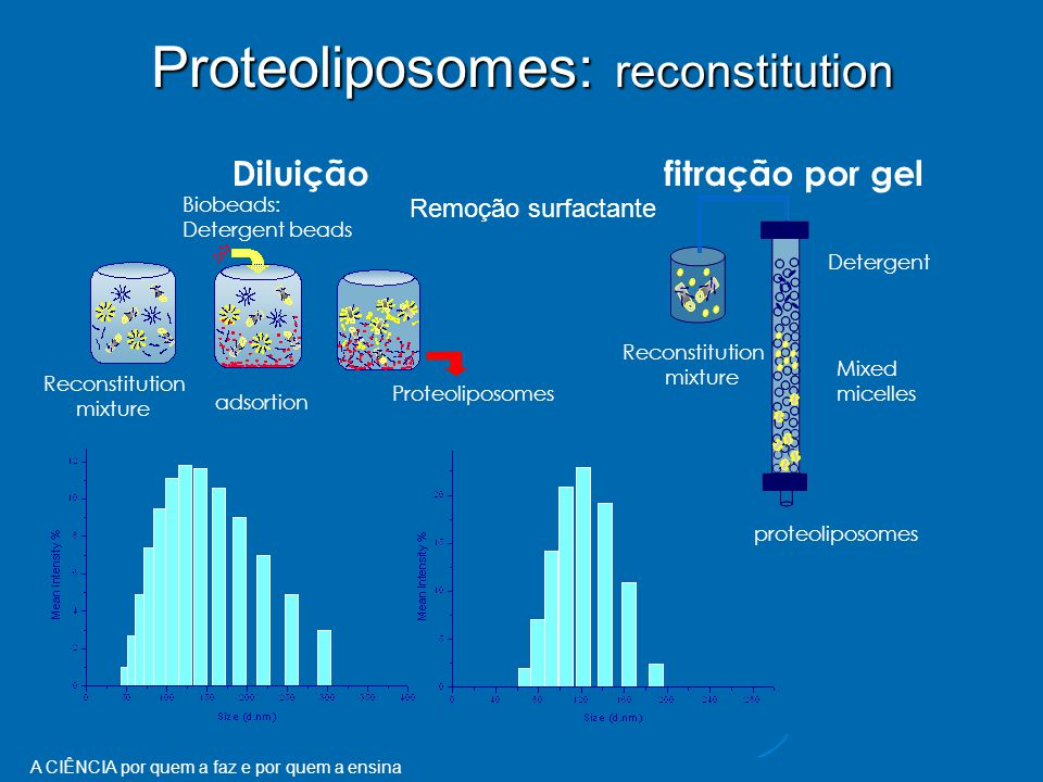 Proteoliposomes: reconstitution