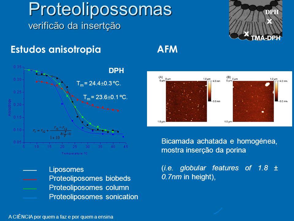 Proteolipossomas verificão da insertção