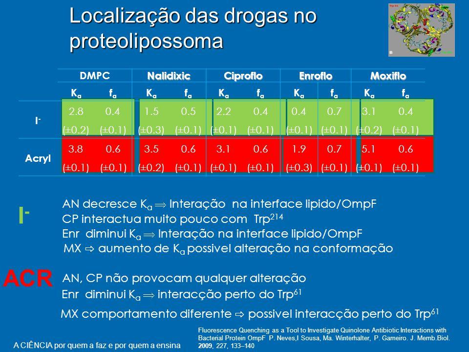 Localização das drogas no proteolipossoma