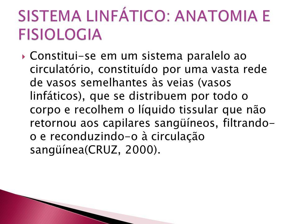 SISTEMA LINFÁTICO: ANATOMIA E FISIOLOGIA