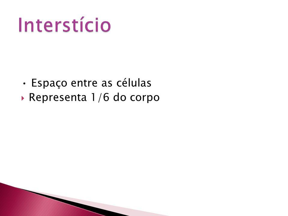 Interstício • Espaço entre as células Representa 1/6 do corpo