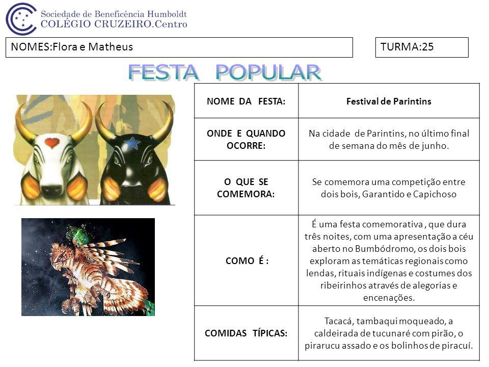 FESTA POPULAR NOMES:Flora e Matheus TURMA:25 NOME DA FESTA: