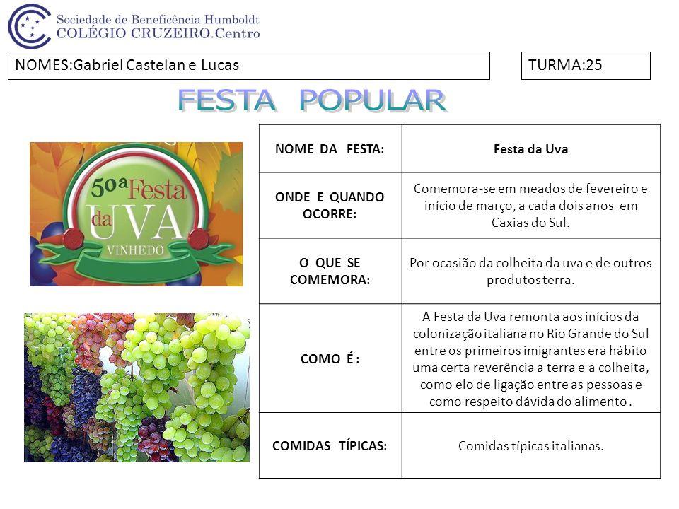 FESTA POPULAR NOMES:Gabriel Castelan e Lucas TURMA:25 NOME DA FESTA: