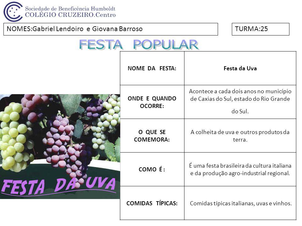 FESTA POPULAR NOMES:Gabriel Lendoiro e Giovana Barroso TURMA:25