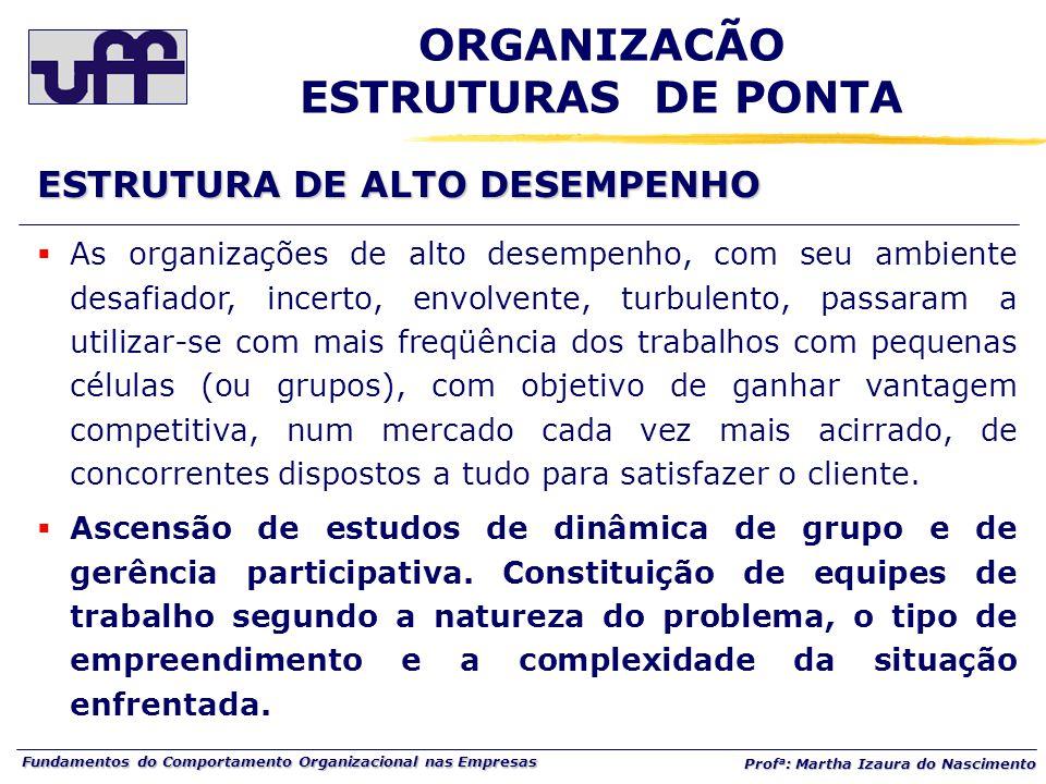 ORGANIZACÃO ESTRUTURAS DE PONTA
