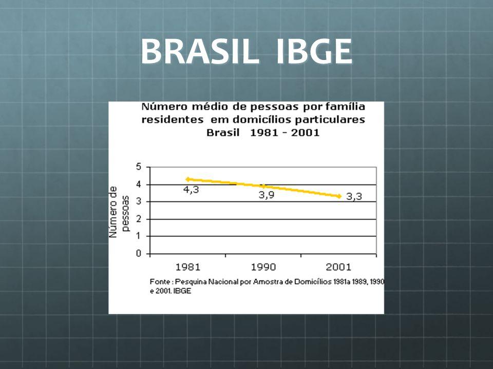 BRASIL IBGE