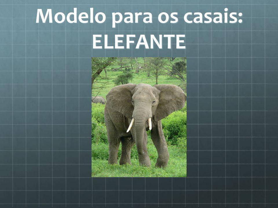Modelo para os casais: ELEFANTE