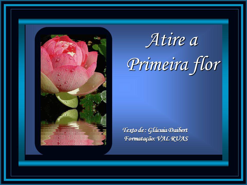 Atire a Primeira flor Texto de : Glácuia Daibert Formatação: VAL RUAS