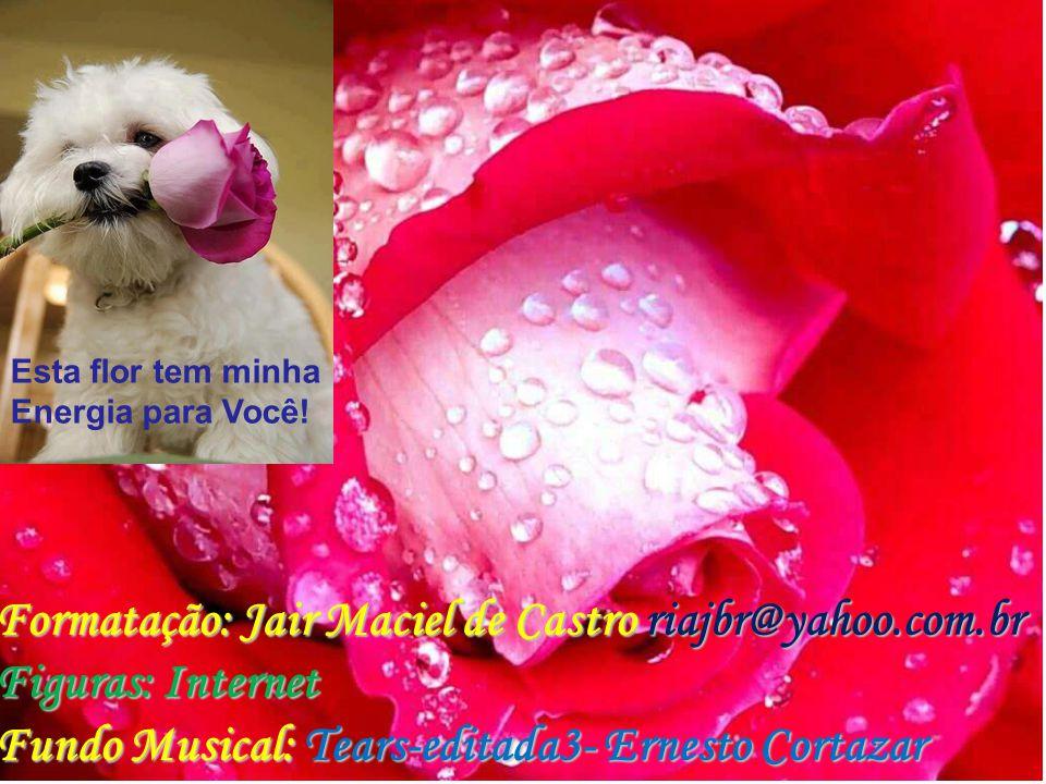 Formatação: Jair Maciel de Castro riajbr@yahoo.com.br
