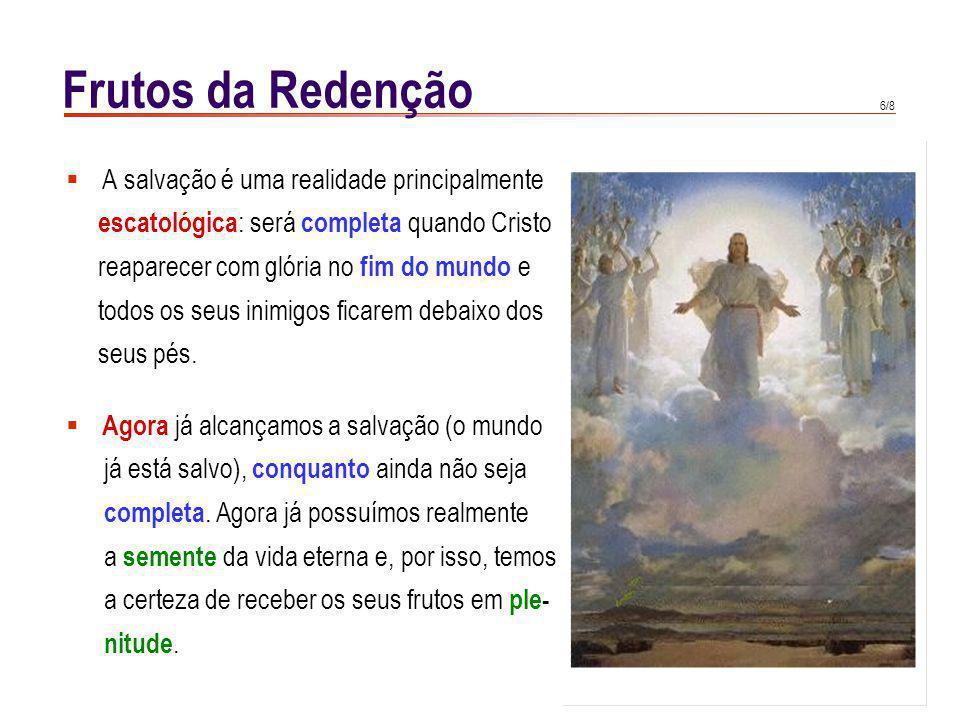 Frutos da Redenção Maria não só recebeu a mais perfeita participação