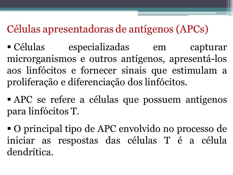 Células apresentadoras de antígenos (APCs)