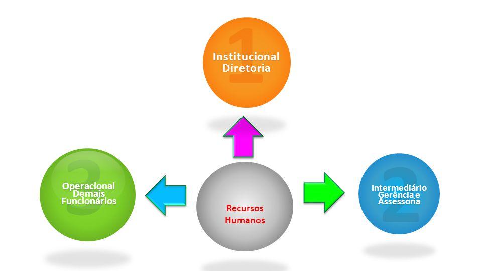 1 3 2 Institucional Diretoria Recursos Humanos Operacional