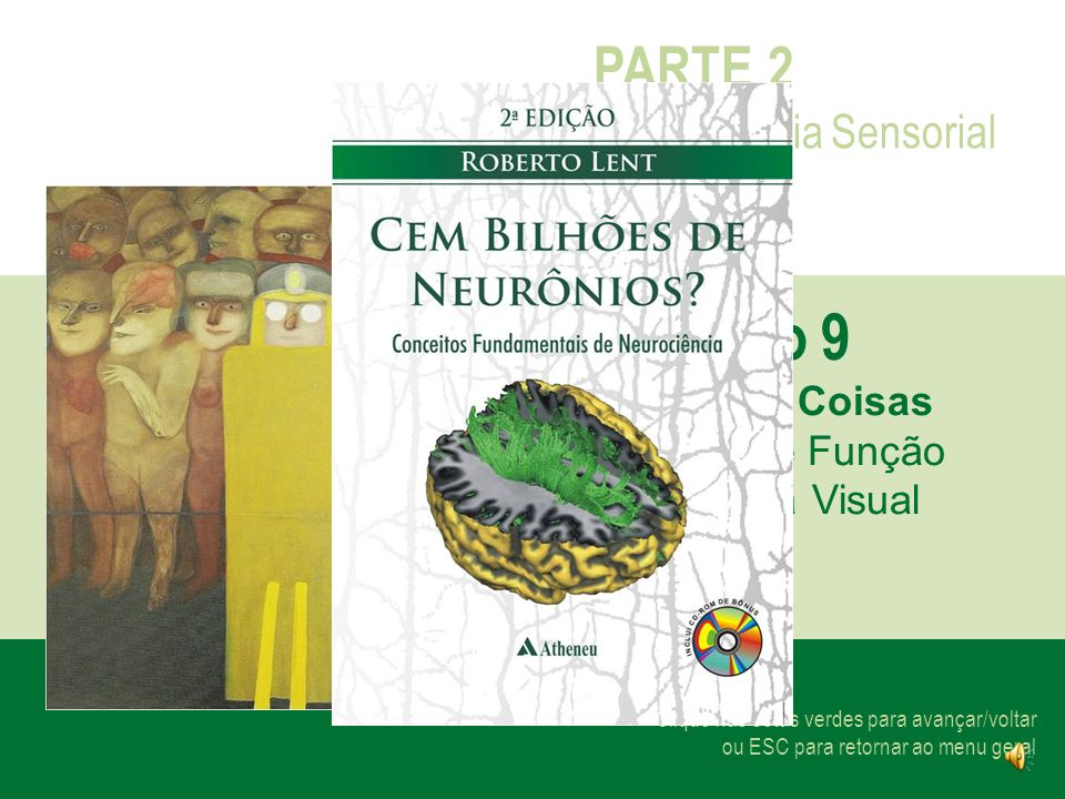 Capítulo 9 PARTE 2 Neurociência Sensorial Visão das Coisas