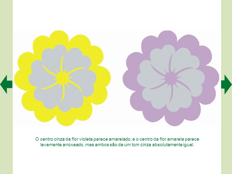 O centro cinza da flor violeta parece amarelado, e o centro da flor amarela parece levemente arroxeado, mas ambos são de um tom cinza absolutamente igual.