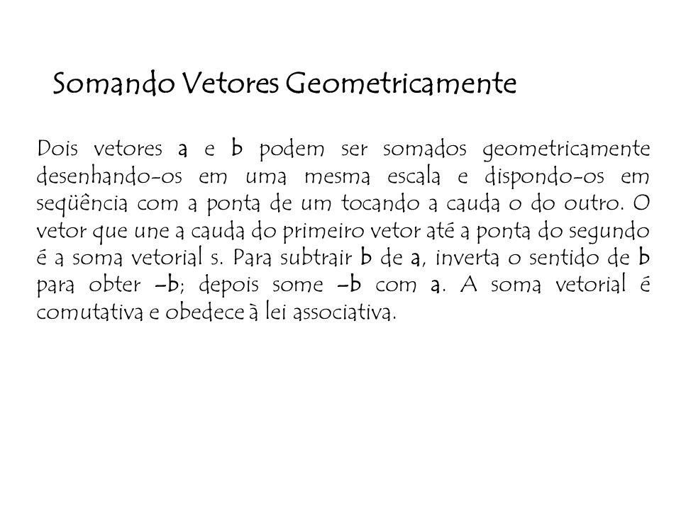Somando Vetores Geometricamente