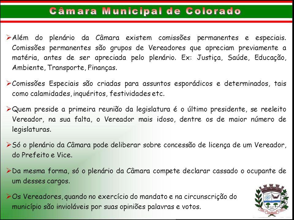 Além do plenário da Câmara existem comissões permanentes e especiais