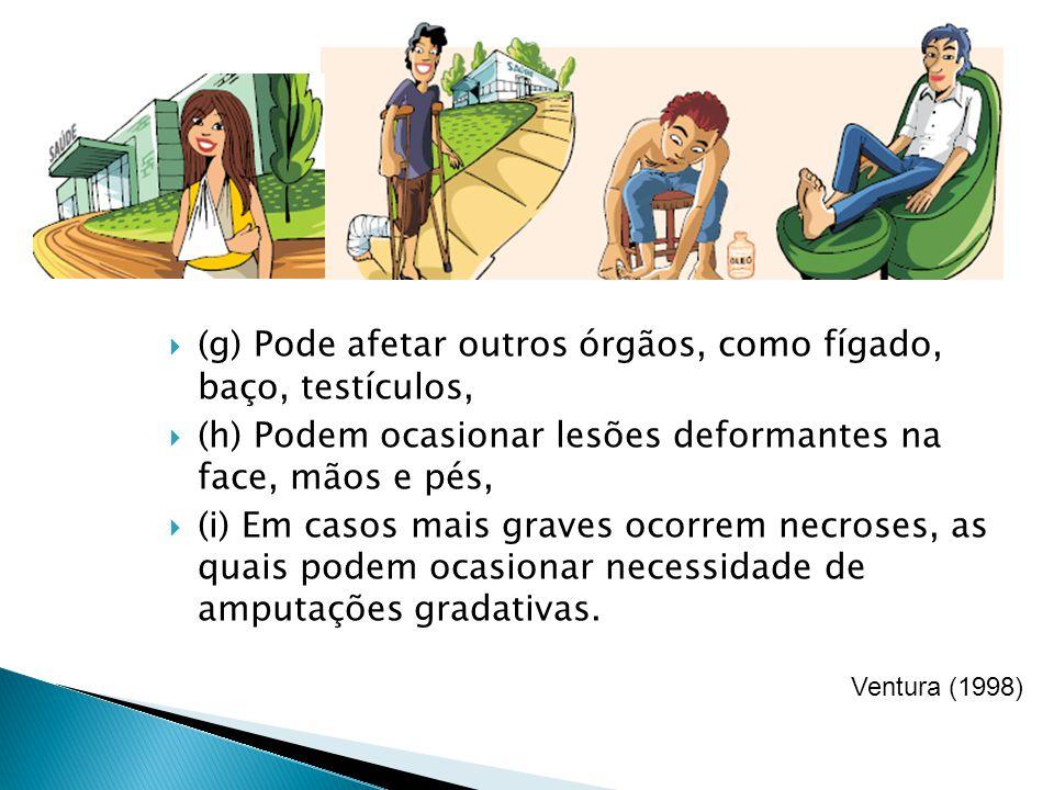 (g) Pode afetar outros órgãos, como fígado, baço, testículos,